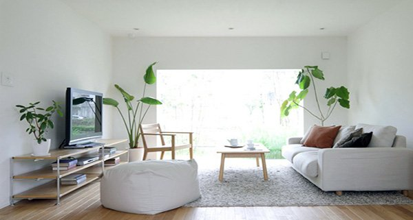 small minimalist living room